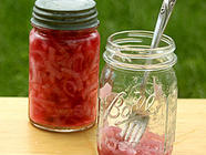 Pickled Red Onions - Easy Quick Recipe